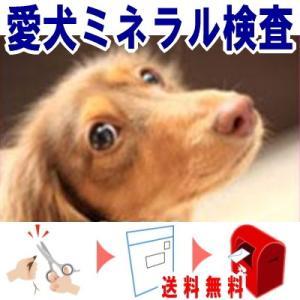 愛犬ミネラル検査 19元素のミネラルを計測  愛犬の被毛を送るだけの簡単検査キット ら・べるびぃ予防医学研究所 ペット用品|seedsneeds