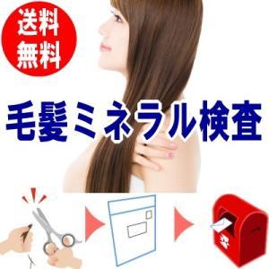 毛髪ミネラル検査 26元素のミネラルを計測  毛髪を送るだけの簡単検査キット 妊活 ら・べるびぃ予防医学研究所