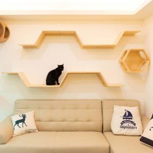 MYZOO マイズーキャットウォークセット ZONEステップ 各3個セット 天然木 木目柄 パイン無垢材 猫家具 壁面取付 ナチュラル|sefety-shop