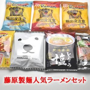 藤原製麺 7種類人気ラーメンセット 各一人前 計7食【インスタント】【袋麺】 【送料無料】|segp-shop