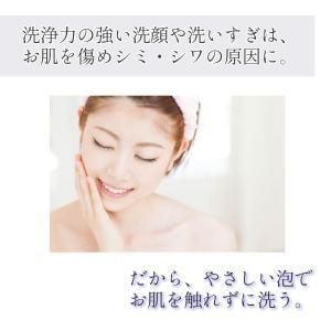 Segurora 赤ちゃん肌を目指す無添加クレンジング 毛穴対策 敏感肌 泡あわクレンジングフォーム300ml セグロラ化粧品|segurora|02