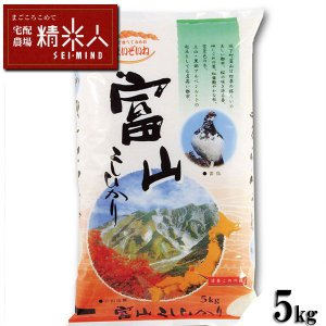 【新米!】令和2年富山県産コシヒカリ 白米5kg OCライス