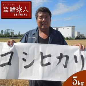 【新米!】H29年静岡県磐田産特別栽培コシヒカリ玄米5kg...