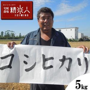 【新米!】H29年静岡県磐田産特別栽培コシヒカリ白米5kg...