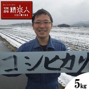 【新米!】H29年兵庫県丹波篠山産特別栽培コシヒカリ白米5k...