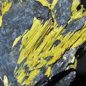 ゴールドタイチンルチルクラスター パワーストーン 天然石 t801-195|seian