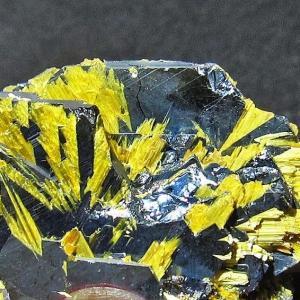ゴールドタイチンルチルクラスター パワーストーン 天然石 t801-225|seian