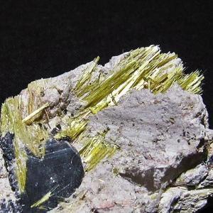 ゴールドタイチンルチルクラスター パワーストーン 天然石 t801-235|seian