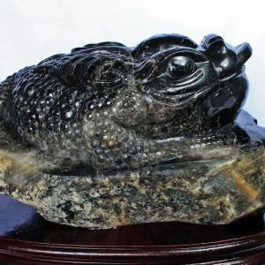 43.5Kg 黒水晶(モリオン 原石 本物 )金蟾 同梱不可(特大品) パワーストーン 天然石 s4-19|seian