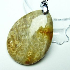 フォッシルコーラル  ペンダント   化石珊瑚 t155-1083|seian