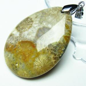 フォッシルコーラル  ペンダント   化石珊瑚 t155-1154|seian