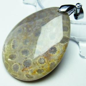 フォッシルコーラル  ペンダント   化石珊瑚 t155-1172|seian