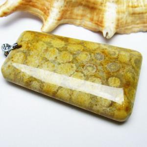 フォッシルコーラル  ペンダント   化石珊瑚 パワーストーン 天然石 t155-1416|seian