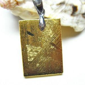 ゴールドギベオン メテオライト  ペンダント  t309-1828 seian