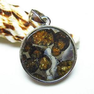 パラサイト隕石 かんらん石  ペンダント  t453-2502|seian