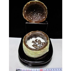 ペア水晶トレジャーメノウ t605-2638|seian