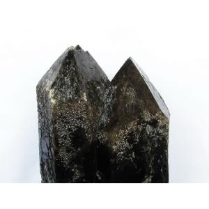 24.3Kg モリオン 純天然 黒水晶 カテドラルライブラリー 水晶 原石 t735-2927|seian|04