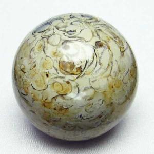 フォッシルシェル 貝 化石  丸玉 52mm  パワーストーン 天然石 t757-1285|seian