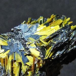ゴールドタイチンルチルクラスター パワーストーン 天然石 t801-190|seian