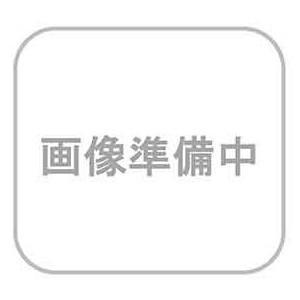 ホリゾン 薄手表紙(糊付け製本機用) C15-S(100枚)|seibu-store