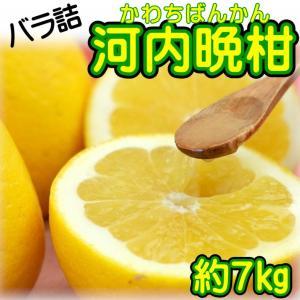 バラ詰 愛媛県産 河内晩柑 約7kg...
