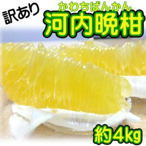 訳あり 愛媛県産 河内晩柑 約4kg...