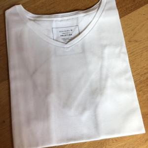 PRISTINEプリスティン × 成城フェアリー オリジナルTシャツ【Gents.Lサイズ】|seijo-fairy