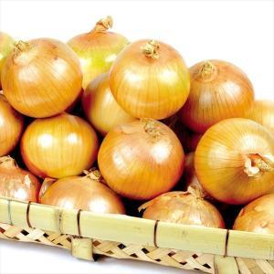 たまねぎ お買得 佐賀産 たまねぎ(10kg)S〜2L 玉葱 じゃがいも 野菜 国華園|seikaokoku