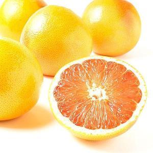 グレープフルーツ 南アフリカ産 グレープフルーツ・ホワイト(10玉)白肉 柑橘 かんきつ フルーツ 国華園 seikaokoku