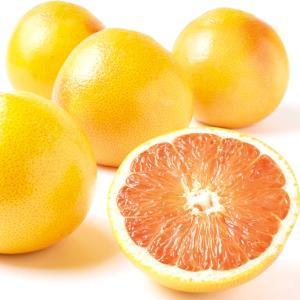 グレープフルーツ 南アフリカ産 グレープフルーツ・ルビー系(10玉)赤肉 柑橘 かんきつ フルーツ 国華園 seikaokoku