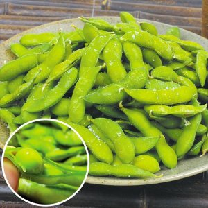 枝豆 山形産 冷凍 だだちゃ豆(1kg) 冷凍 解凍してすぐ食べられる 枝豆の王様 野菜 国華園 seikaokoku