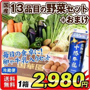【送料無料・クール便】 国産 野菜セット (新鮮野菜13品+卵または牛乳) 合計14品目 お届け内容固定 厳選 SET 詰合せ|seikaokoku