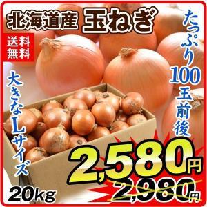 たまねぎ 北海道産 たまねぎ(20kg)Lサイズ 100玉前後 玉葱 ご家庭用 大量 野菜 国華園