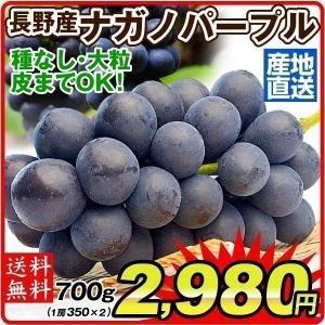 ぶどう 長野産 ナガノパープル 約350g×2 ご家庭用 パック 産地直送 葡萄 ブドウ フルーツ くだもの 食品 国華園|seikaokoku