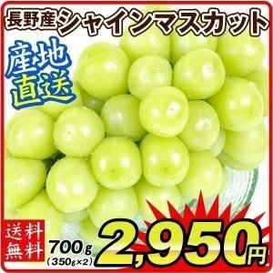 ぶどう 長野産 シャインマスカット 約350g×2 ご家庭用 パック 産地直送 葡萄 ブドウ フルー...