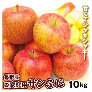 りんご 長野産 サンふじ(10kg)24〜46玉 ご家庭用 ギフト可能 産地直送 林檎 リンゴ フルーツ くだもの 食品 国華園|seikaokoku