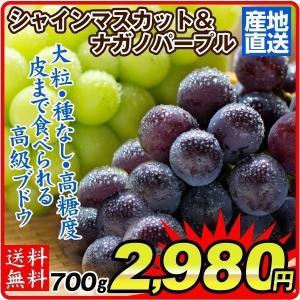 長野産 ナガノパープル・シャインマスカット 計700g1組 詰め合わせ 極甘 種なし 皮ごと食べれる 国華園|seikaokoku