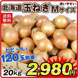 たまねぎ 北海道産 たまねぎ(20kg)Mサイズ 120玉前後 玉葱 ご家庭用 大量 野菜 国華園|seikaokoku