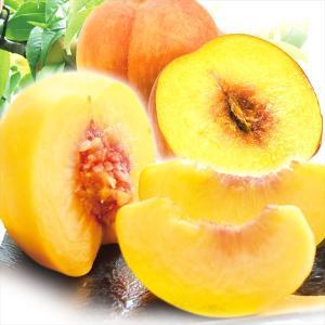 桃 山形産 みちのく黄金桃 2kg 1組 モモ 国華園 黄桃 ピーチ 品種おまかせ|seikaokoku