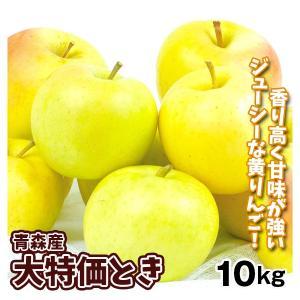 りんご 青森産 とき(10kg)28〜56玉 林檎 フルーツ 国華園|seikaokoku
