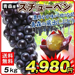 青森産 スチューベン 5kg 1箱|seikaokoku