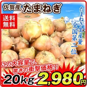 たまねぎ 佐賀産 玉ねぎ(20kg)M〜3L ご家庭用 大量 野菜 やさい 新鮮 国華園|seikaokoku