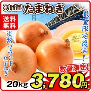 たまねぎ 淡路産 玉ねぎ(20kg)2L 数量限定 大量 あわじブランド あわたま 野菜 やさい 新鮮 国華園|seikaokoku