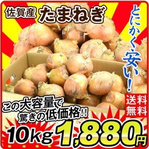 たまねぎ 佐賀産 玉ねぎ(10kg)M〜3L ご家庭用 野菜 やさい 新鮮 国華園|seikaokoku