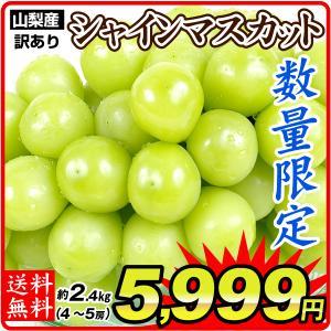 ぶどう 山梨産 シャインマスカット 約2.4kg ご家庭用 たねなし 皮ごと 大粒 パック  葡萄 ブドウ フルーツ くだもの 食品 国華園|seikaokoku