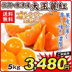 みかん ご家庭用 佐賀・唐津産大玉麗紅(5kg)蜜柑 柑橘 フルーツ 果物 食品 国華園 seikaokoku