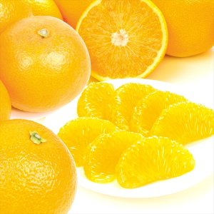 みかん ご家庭用 大分産紅はっさく小玉(10kg)蜜柑 柑橘 フルーツ 果物 食品 国華園 seikaokoku