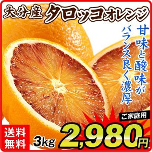 みかん ご家庭用 大分産タロッコオレンジ(5kg)蜜柑 柑橘 フルーツ 果物 食品 国華園 seikaokoku