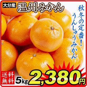 みかん ご家庭用 大分産うんしゅうみかん(5kg)蜜柑 柑橘 フルーツ 果物 食品 国華園 seikaokoku