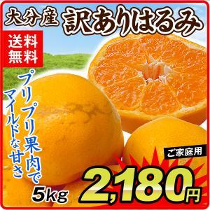 みかん ご家庭用 大分産はるみ(5kg)蜜柑 柑橘 フルーツ 果物 食品 国華園 seikaokoku